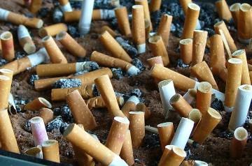 Γόπες τσιγάρων που φυτρώνουν και μετατρέπονται σε δέντρα και λουλούδια