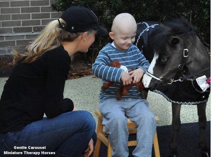 Ένα άλογο - μινιατούρα την ημέρα, τον γιατρό τον κάνει πέρα!
