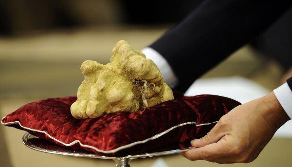 τρούφα το πιο ακριβό φαγητό στο κόσμο