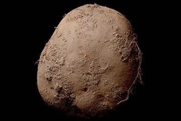 Η φωτογραφία μιας πατάτας που πουλήθηκε για 1 εκατομμύριο ευρώ!